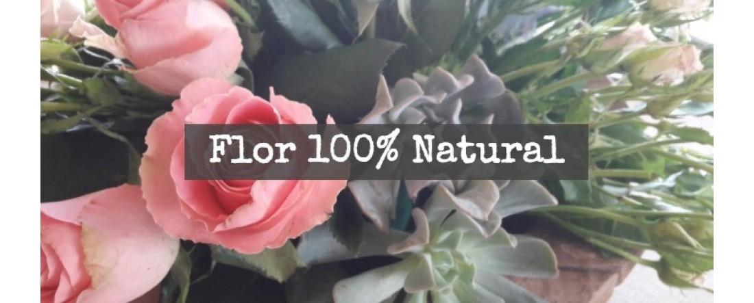 banner flor natural